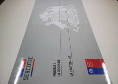 Cheque Gigante